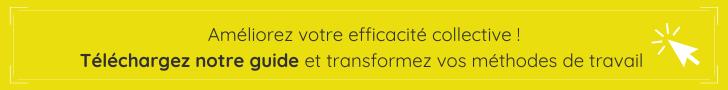 Téléchargez notre guide sur l'Efficacité Collective