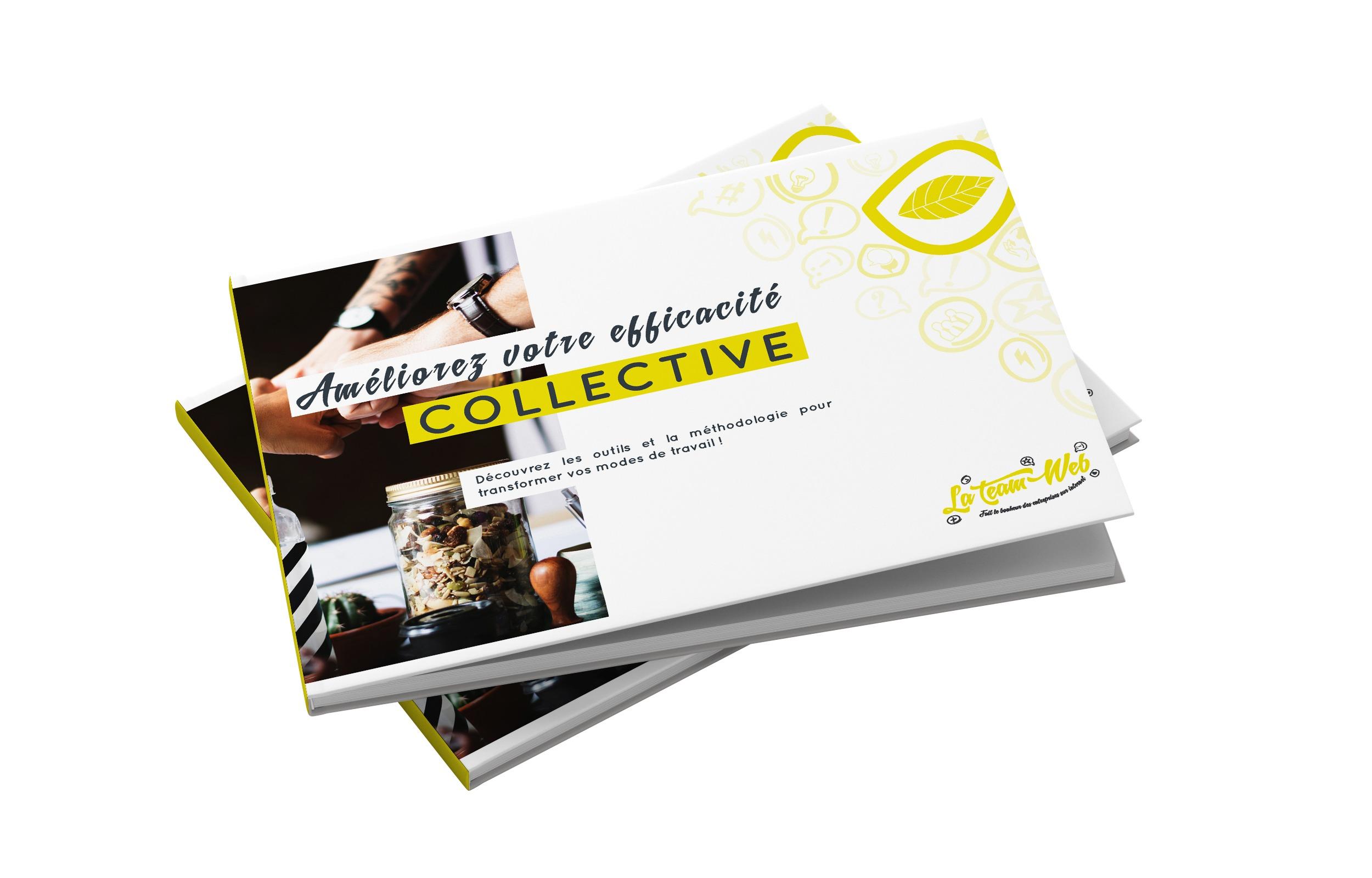 Guide de l'Efficacité Collective